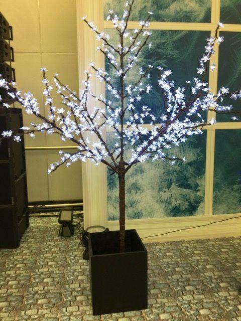 Аренда светодиодных деревьев